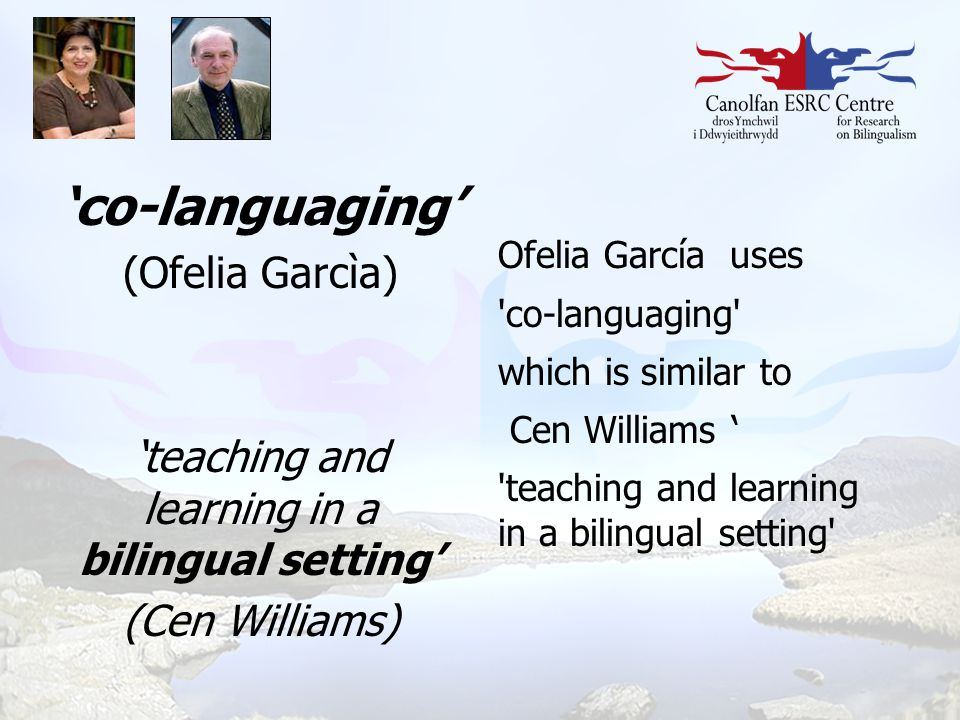 'teaching and learning in a bilingual setting'