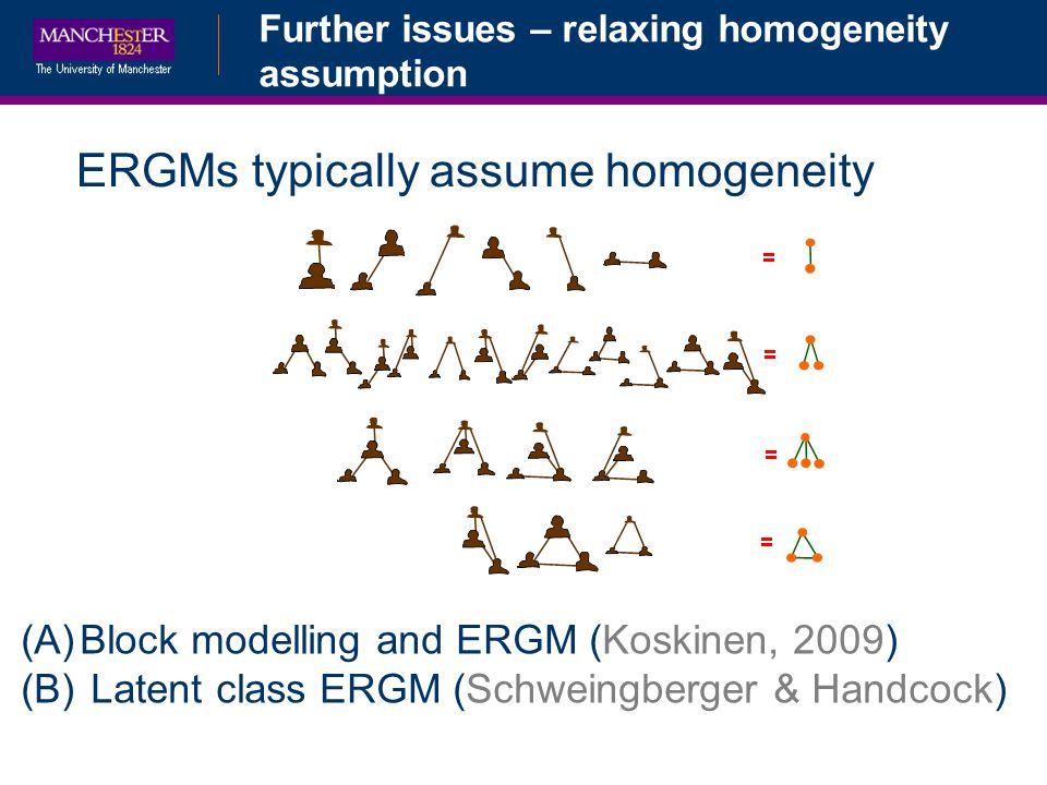 ERGMs typically assume homogeneity