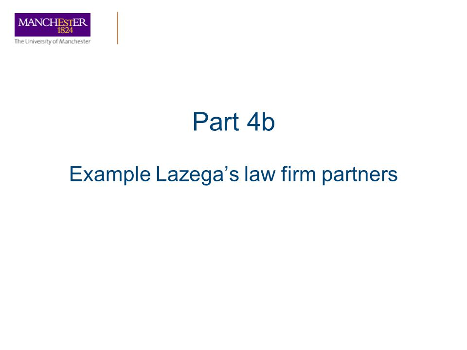 Example Lazega's law firm partners