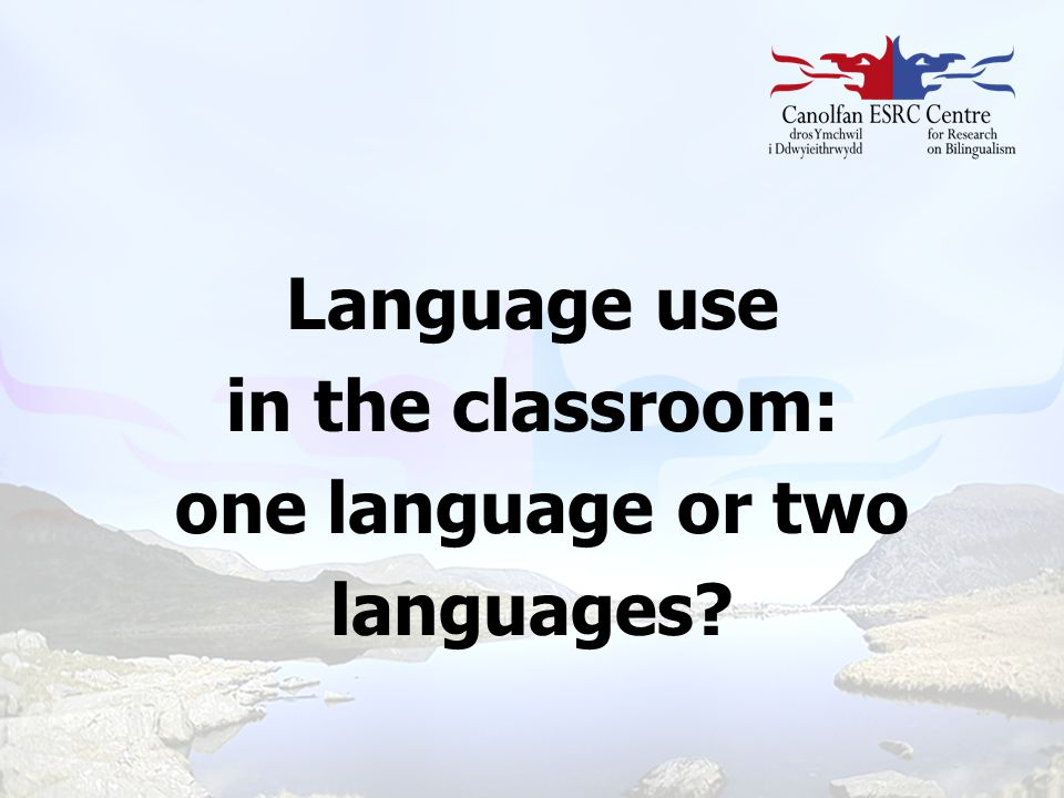 Language use in the classroom: one language or two languages