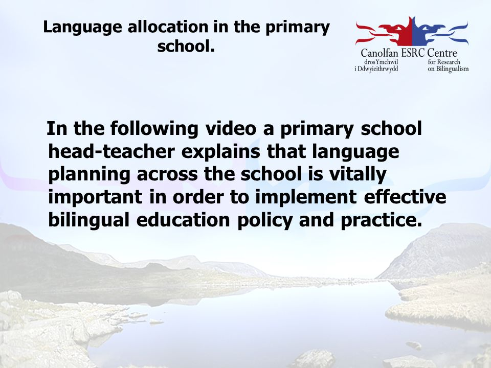 Language allocation in the primary school.