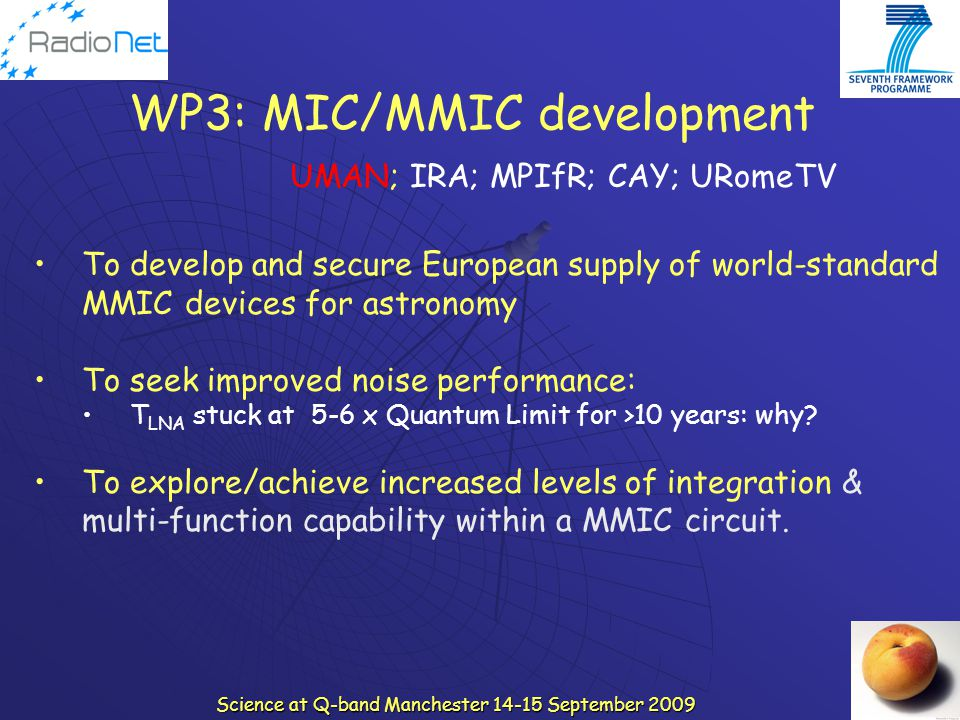WP3: MIC/MMIC development
