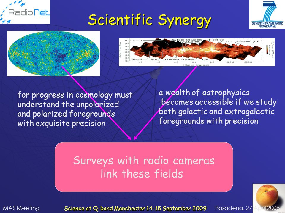 Scientific Synergy Surveys with radio cameras link these fields