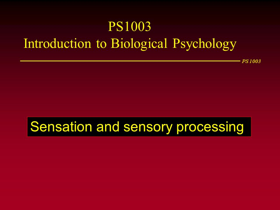 Introduction to Biological Psychology