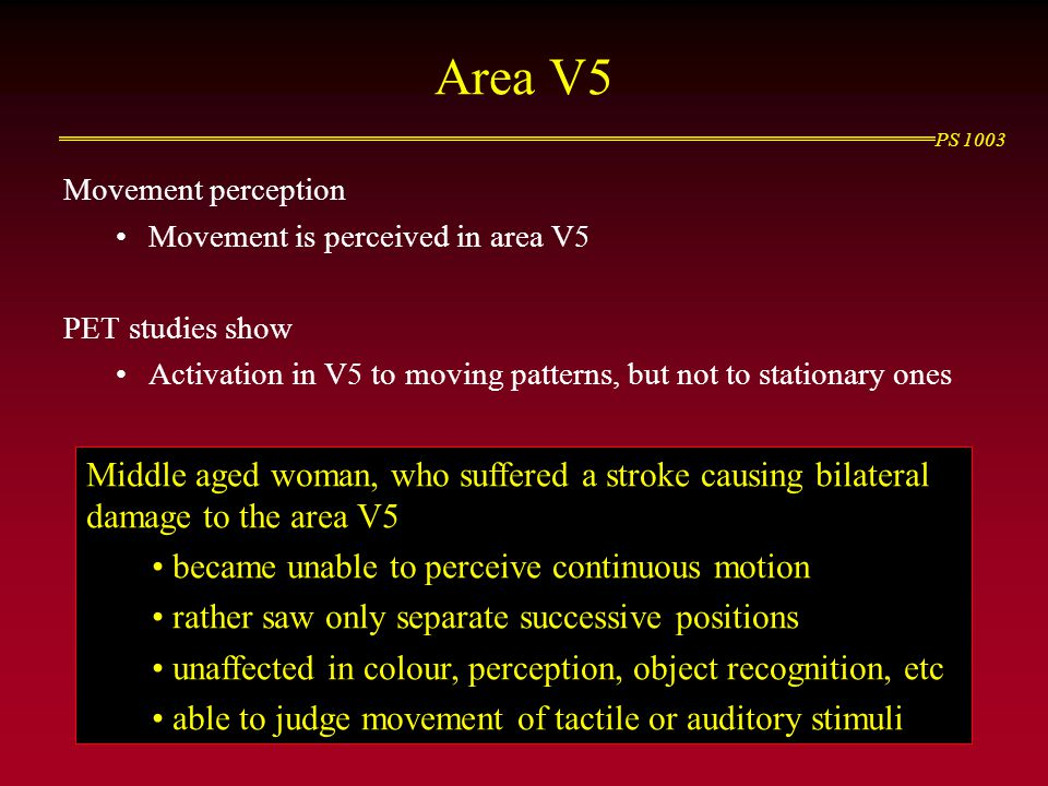 Area V5 Movement perception. Movement is perceived in area V5. PET studies show. Activation in V5 to moving patterns, but not to stationary ones.