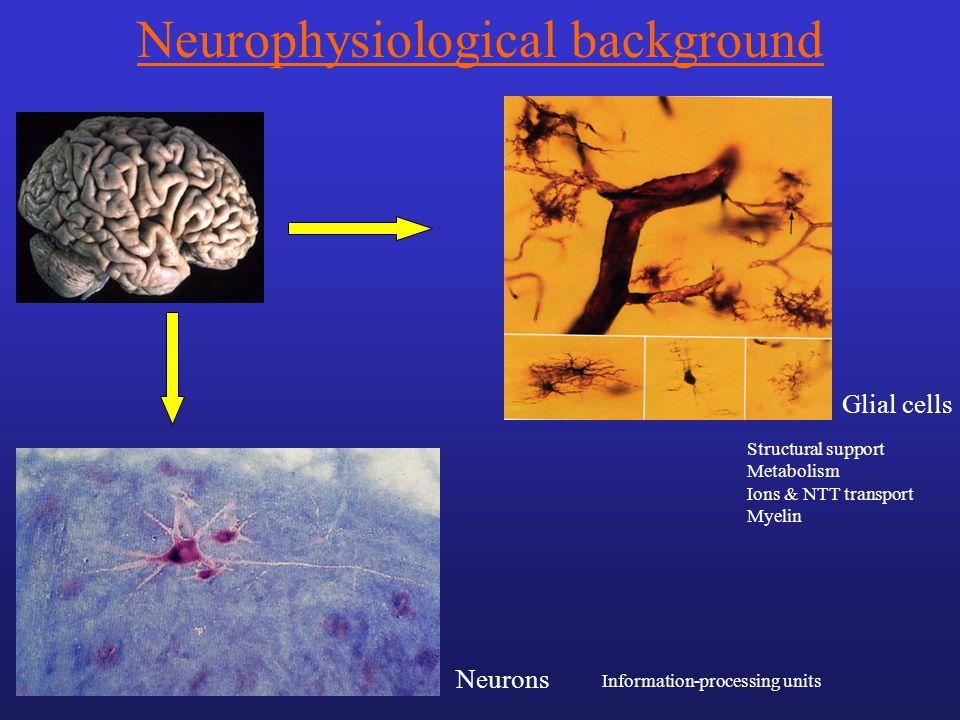 Neurophysiological background
