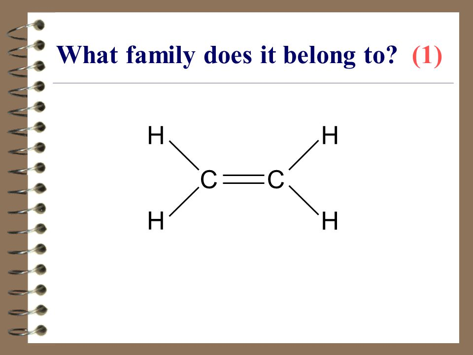 What family does it belong to (1)