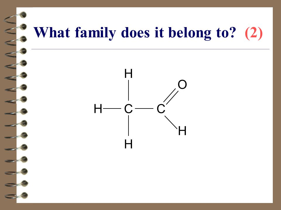 What family does it belong to (2)