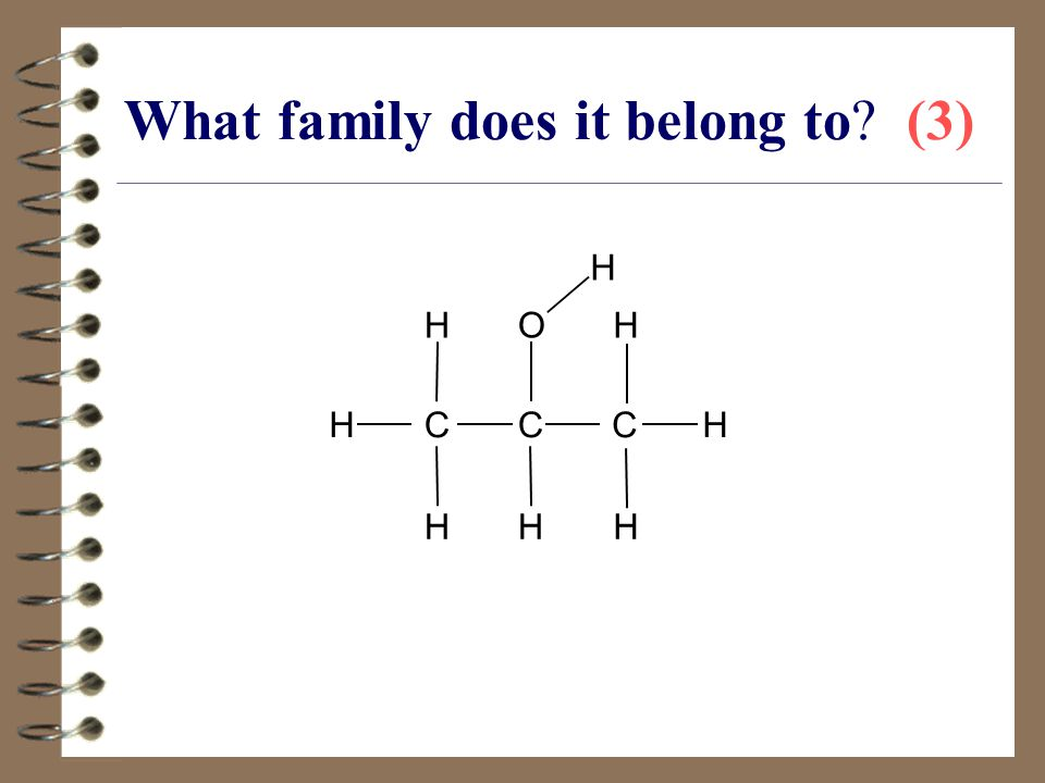 What family does it belong to (3)