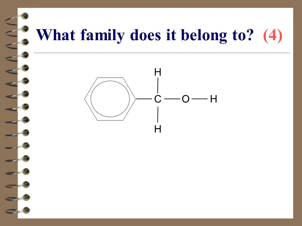 What family does it belong to (4)