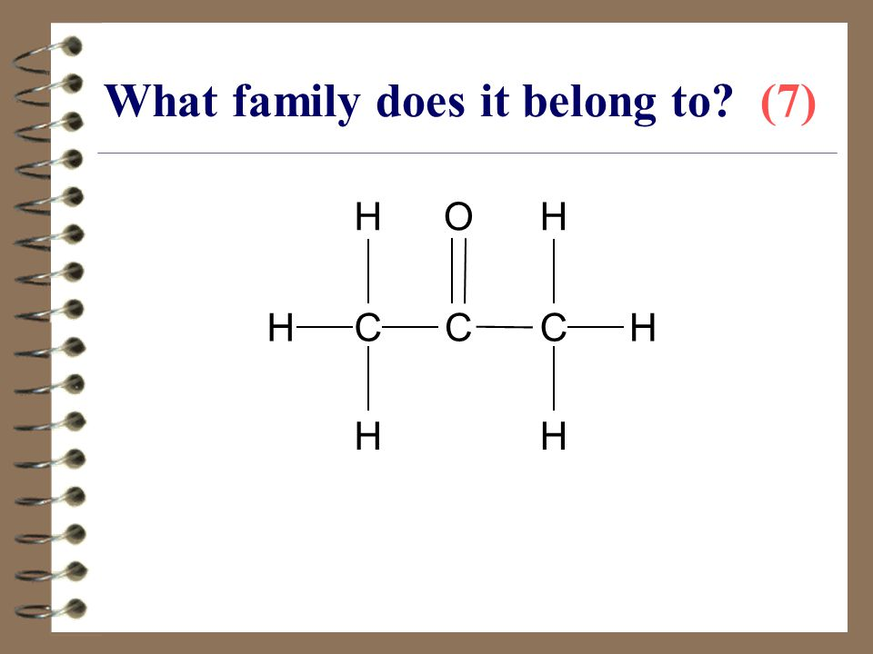 What family does it belong to (7)