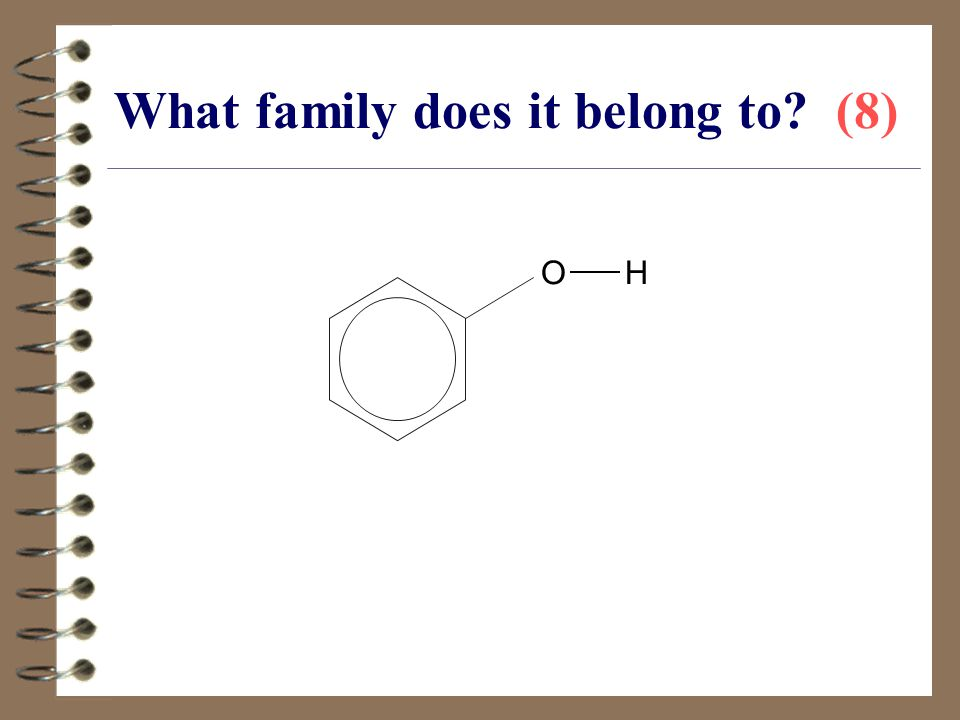 What family does it belong to (8)