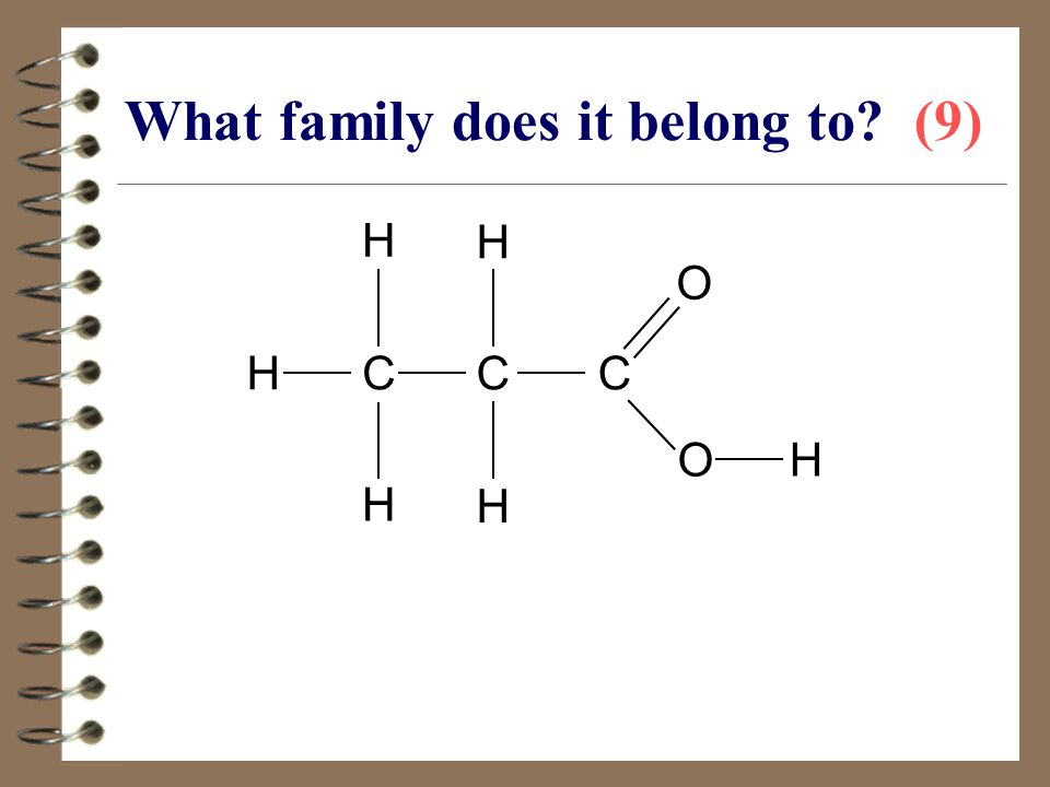 What family does it belong to (9)