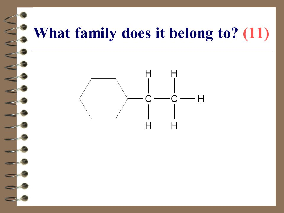 What family does it belong to (11)