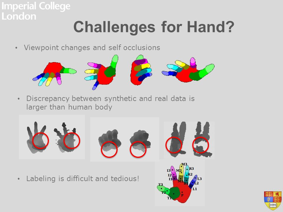Challenges for Hand Viewpoint changes and self occlusions