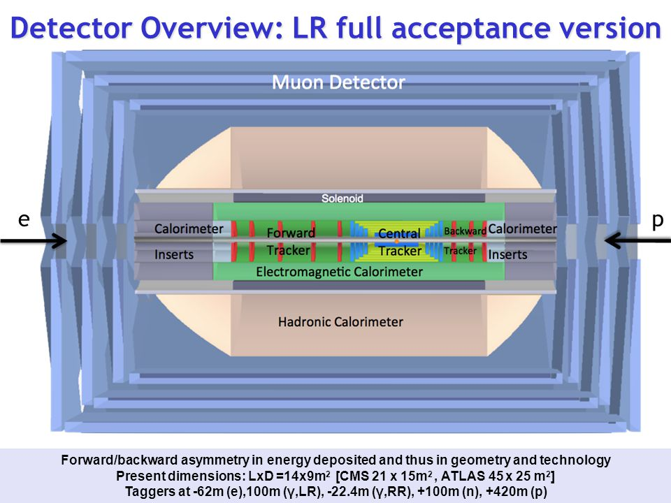 Detector Overview: LR full acceptance version