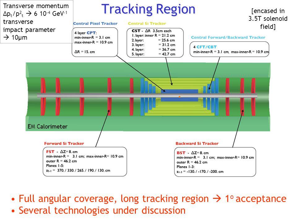 Tracking Region Transverse momentum. Δpt/p2t  6 10-4 GeV-1. transverse. impact parameter.  10μm.