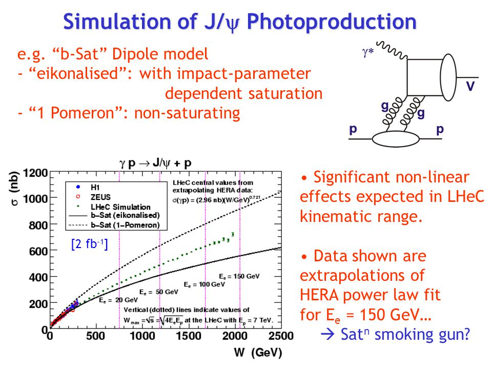 Simulation of J/y Photoproduction