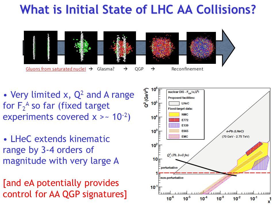 What is Initial State of LHC AA Collisions
