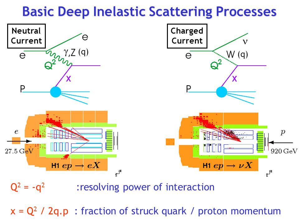 Basic Deep Inelastic Scattering Processes