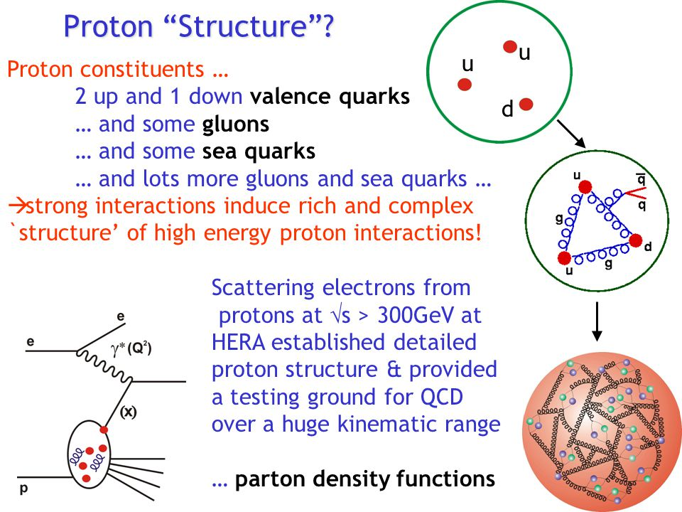 Proton Structure u u Proton constituents …