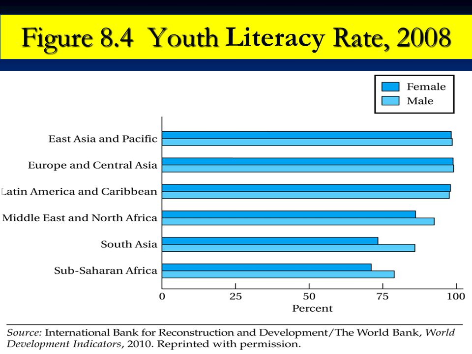 Figure 8.4 Youth Literacy Rate, 2008