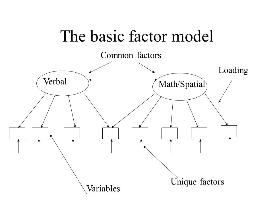 The basic factor model Common factors Loading Verbal Math/Spatial