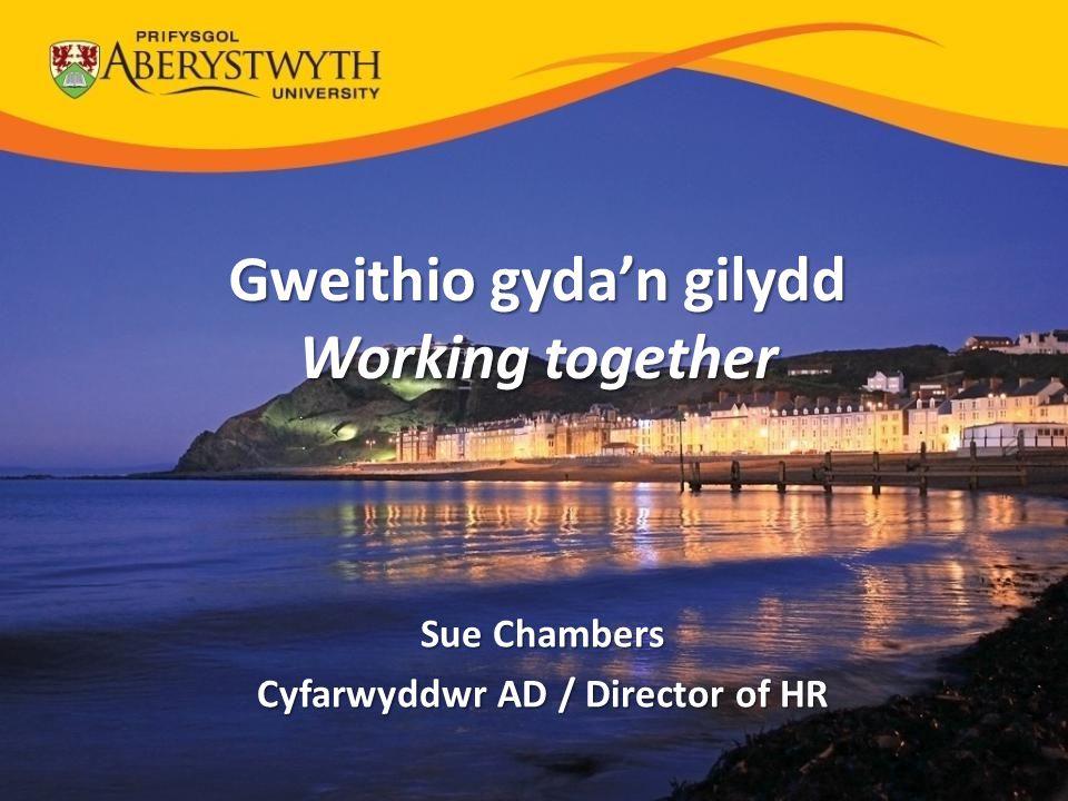 Gweithio gyda'n gilydd Cyfarwyddwr AD / Director of HR