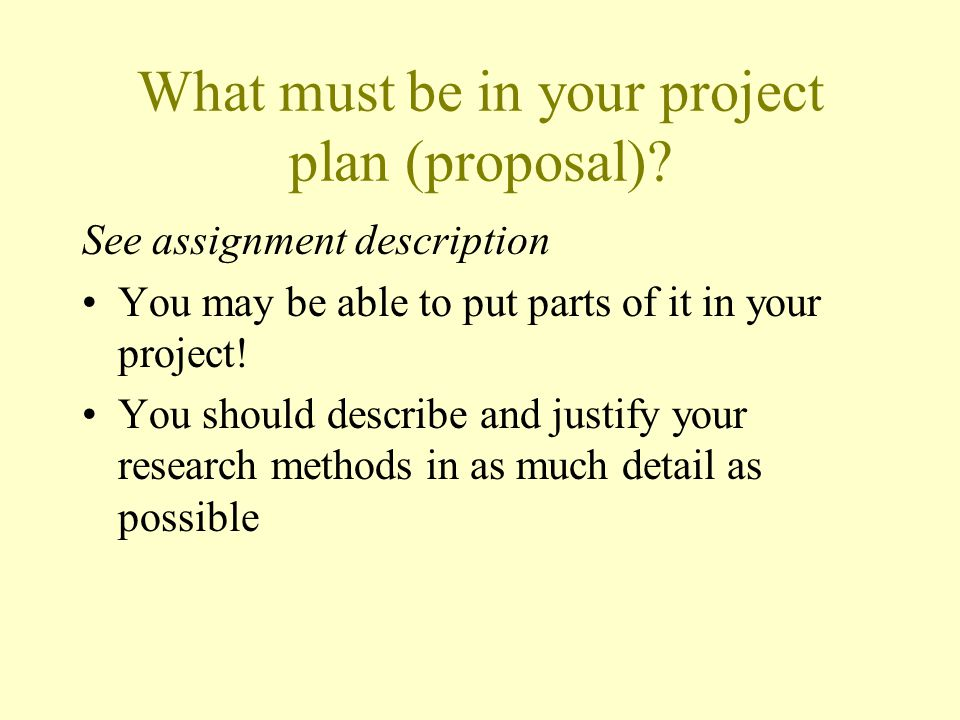 What must be in your project plan (proposal)