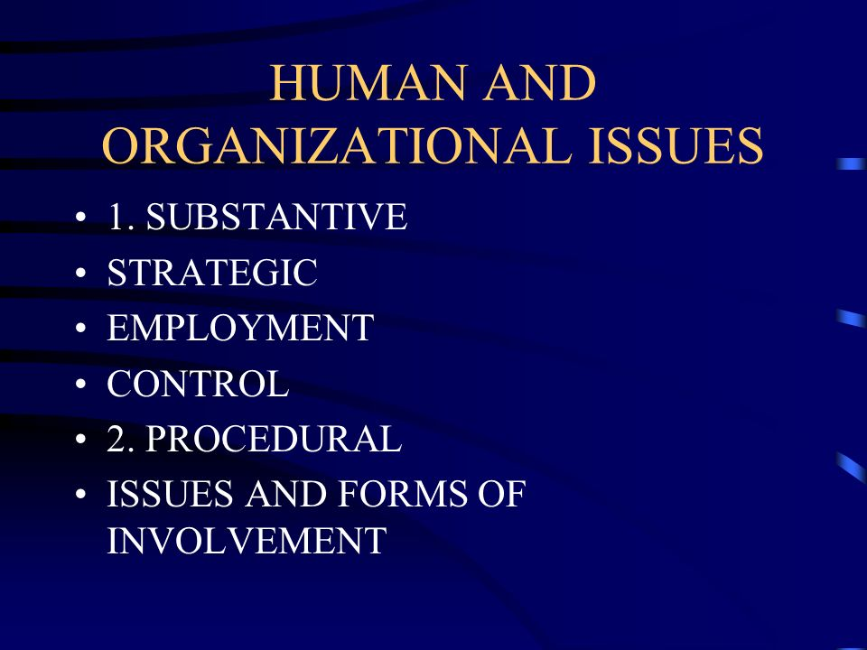 HUMAN AND ORGANIZATIONAL ISSUES