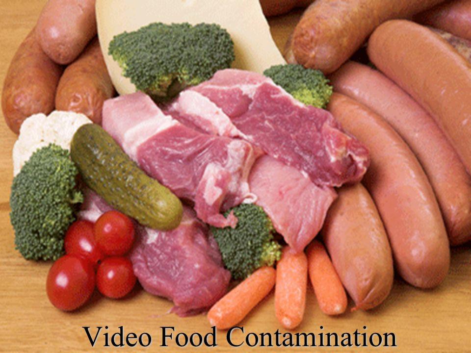Video Food Contamination
