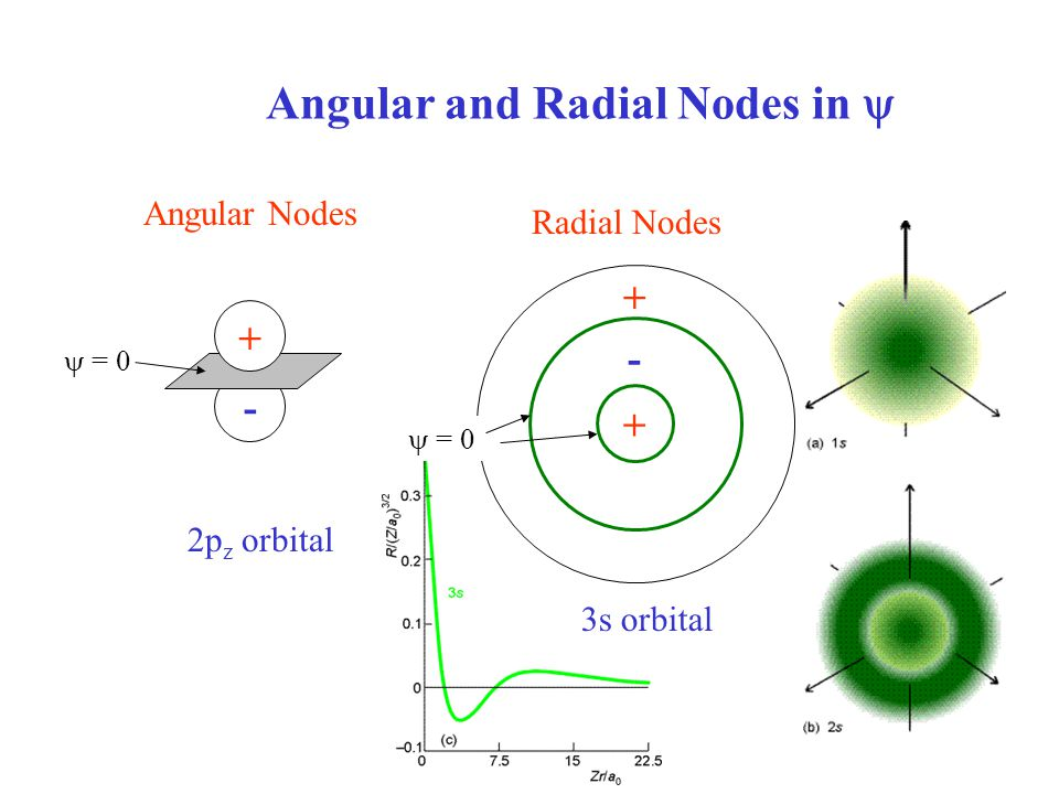 Angular and Radial Nodes in 
