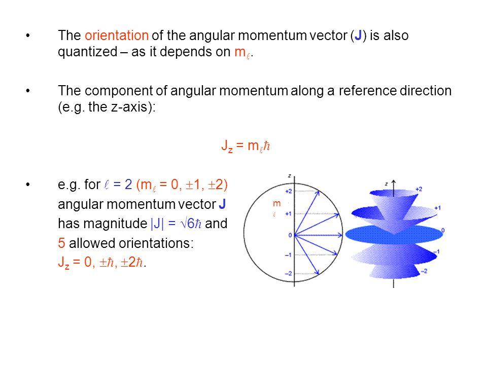 angular momentum vector J has magnitude |J| = 6 and