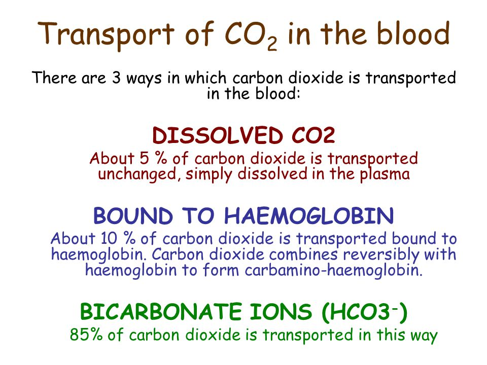 Transport of CO2 in the blood