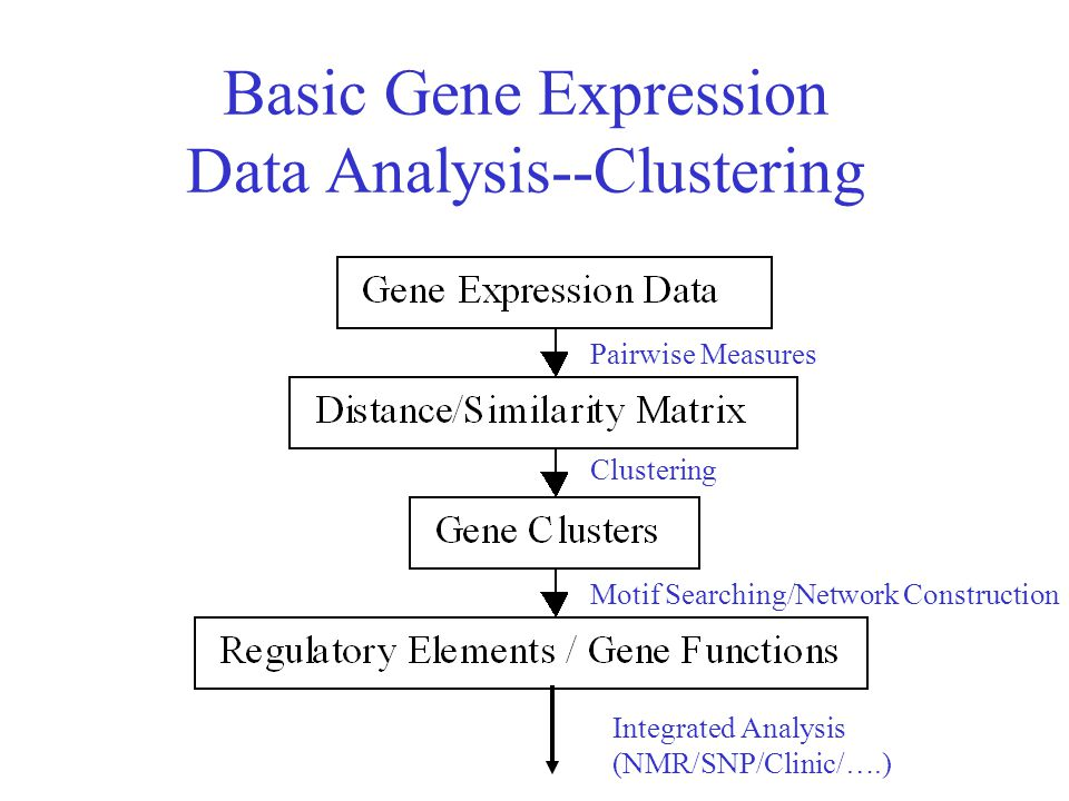 Basic Gene Expression Data Analysis--Clustering