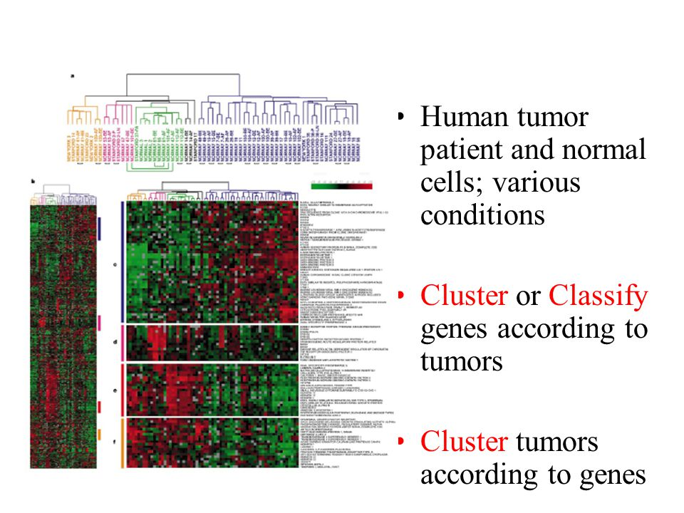 Human tumor patient and normal cells; various conditions