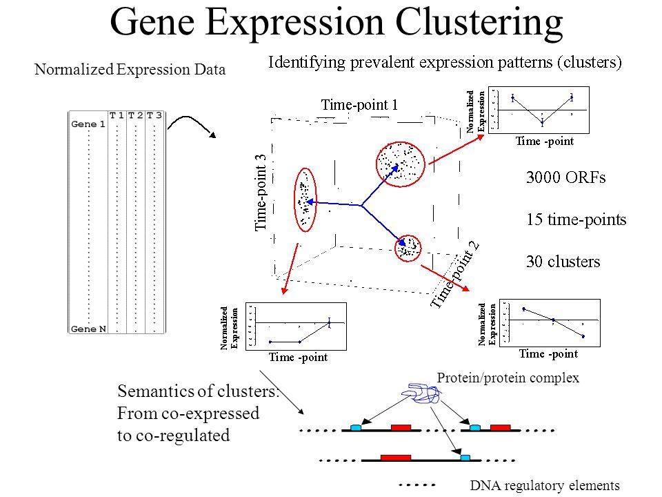 Gene Expression Clustering