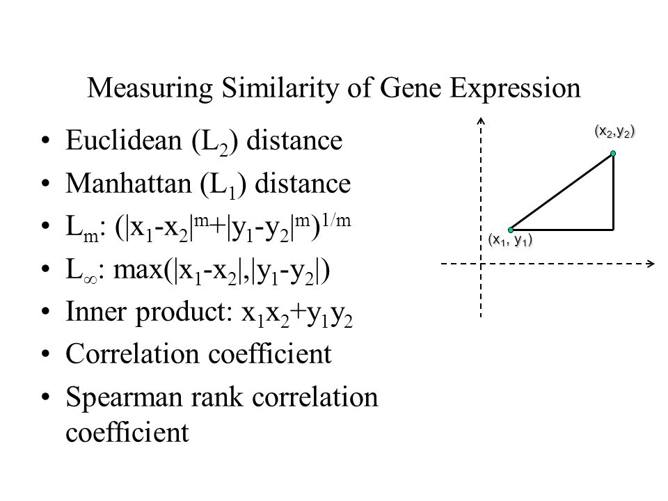 Measuring Similarity of Gene Expression