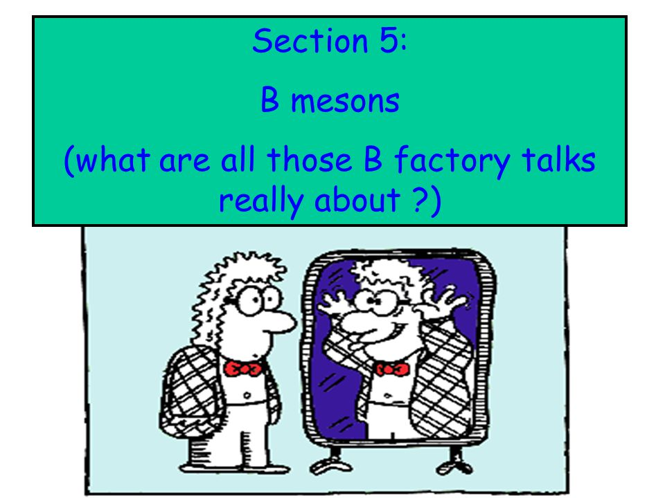 (what are all those B factory talks really about )