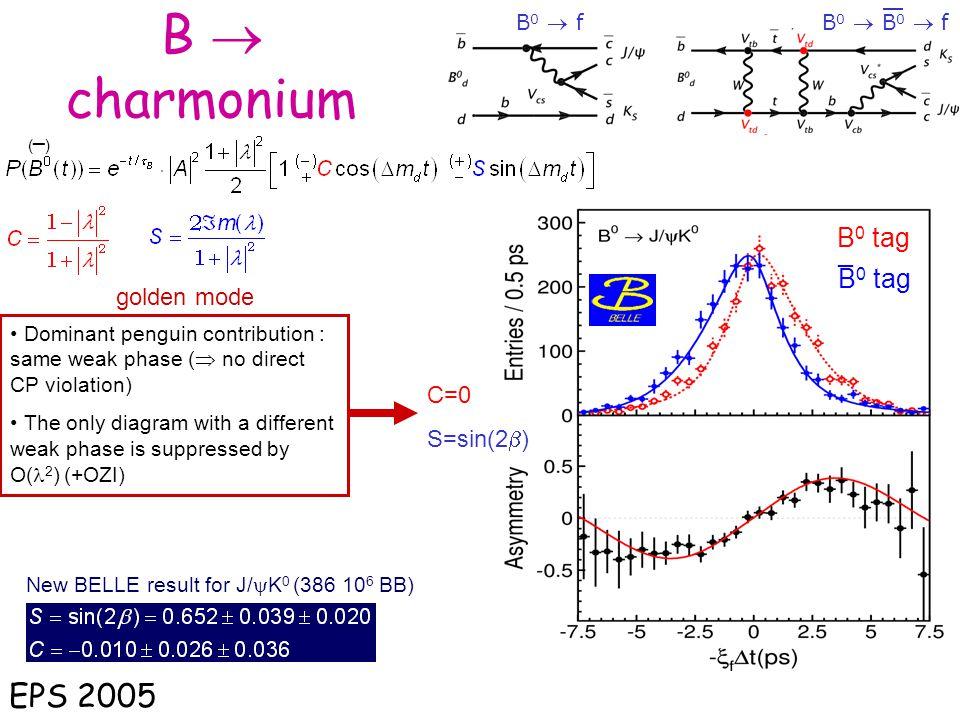 B  charmonium EPS 2005 B0 tag _ B0 tag golden mode C=0 S=sin(2b)
