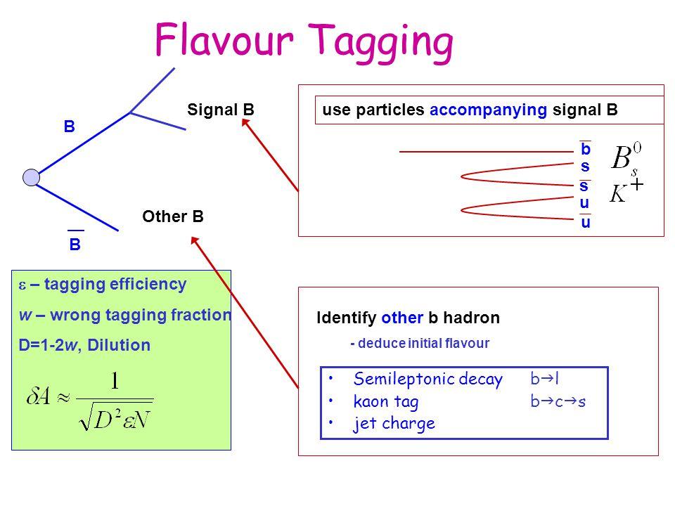 Flavour Tagging B Signal B Other B use particles accompanying signal B