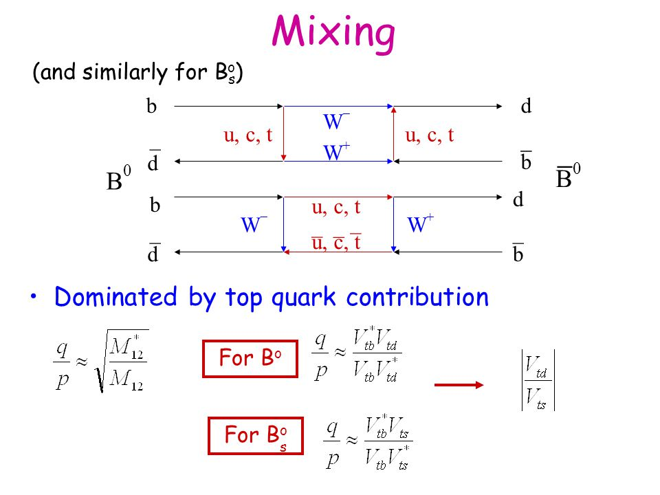 Mixing - B0 B0 Dominated by top quark contribution