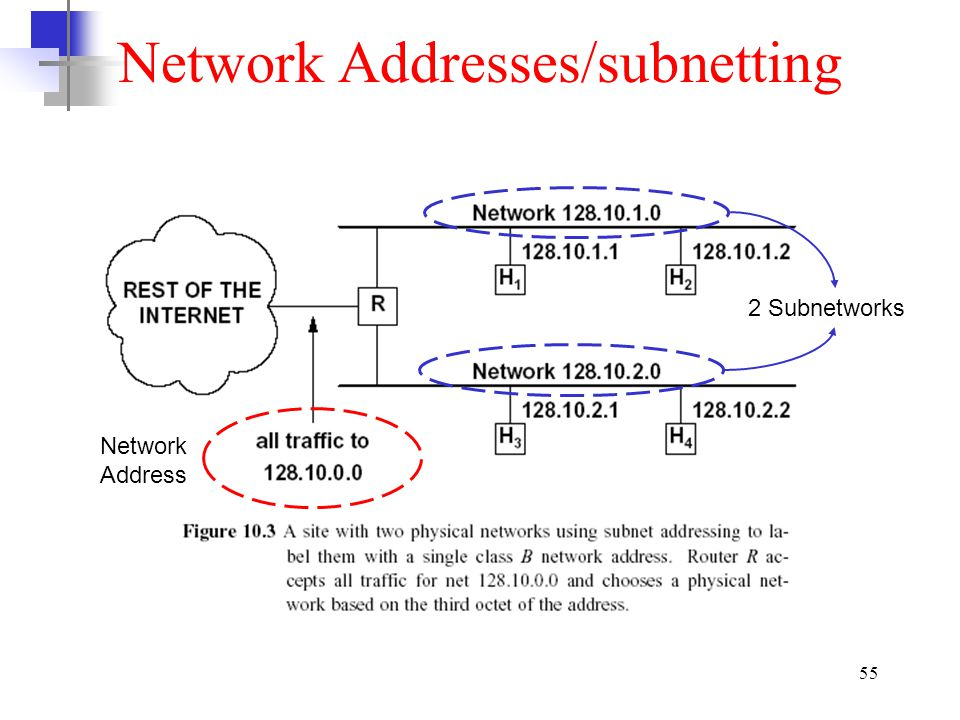 Network Addresses/subnetting