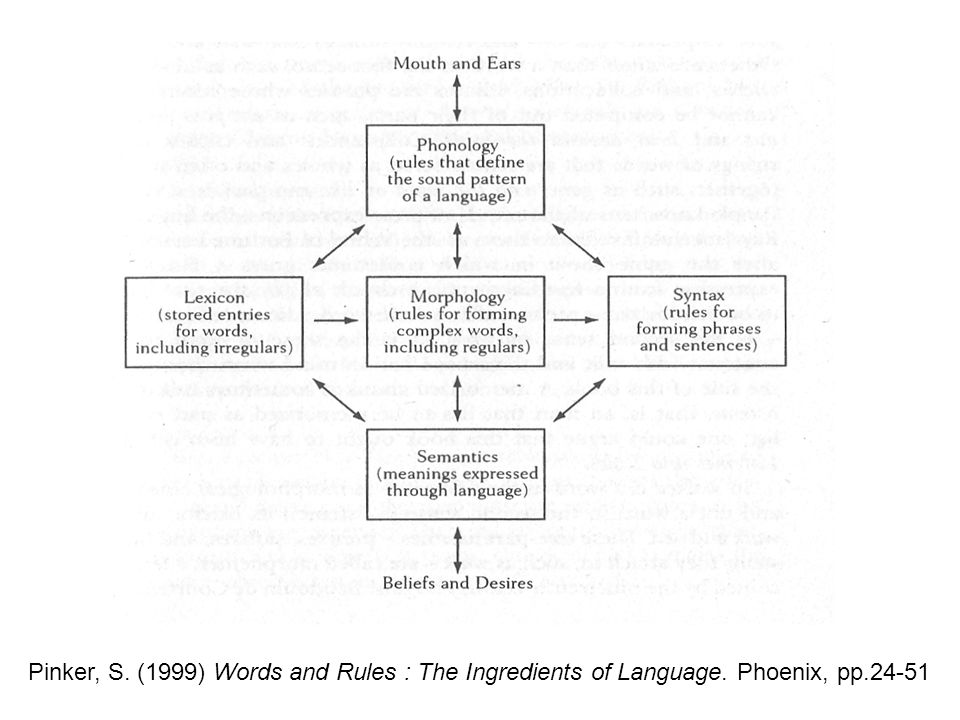 Pinker, S. (1999) Words and Rules : The Ingredients of Language