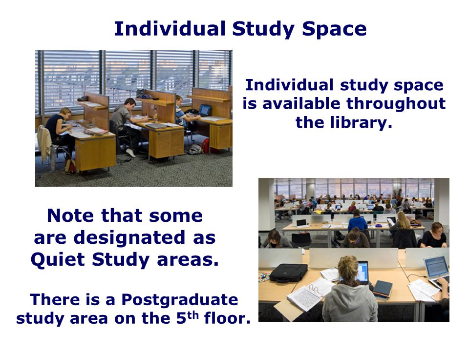 Individual Study Space