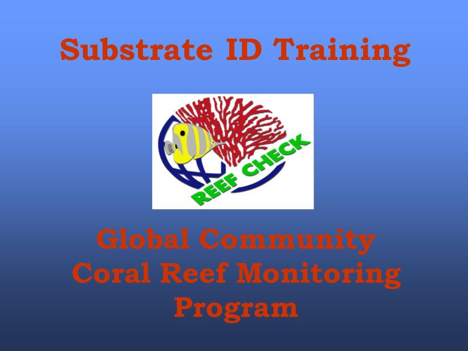Global Community Coral Reef Monitoring Program