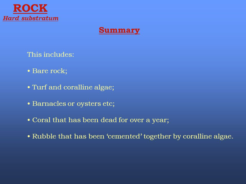 ROCK Summary This includes: Bare rock; Turf and coralline algae;
