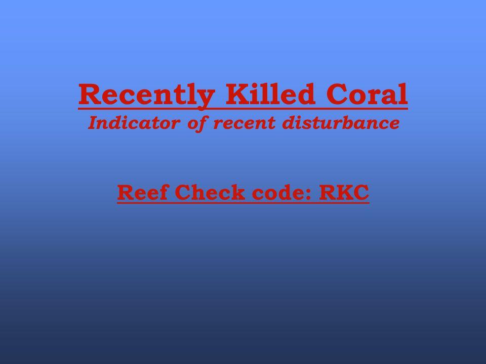 Indicator of recent disturbance
