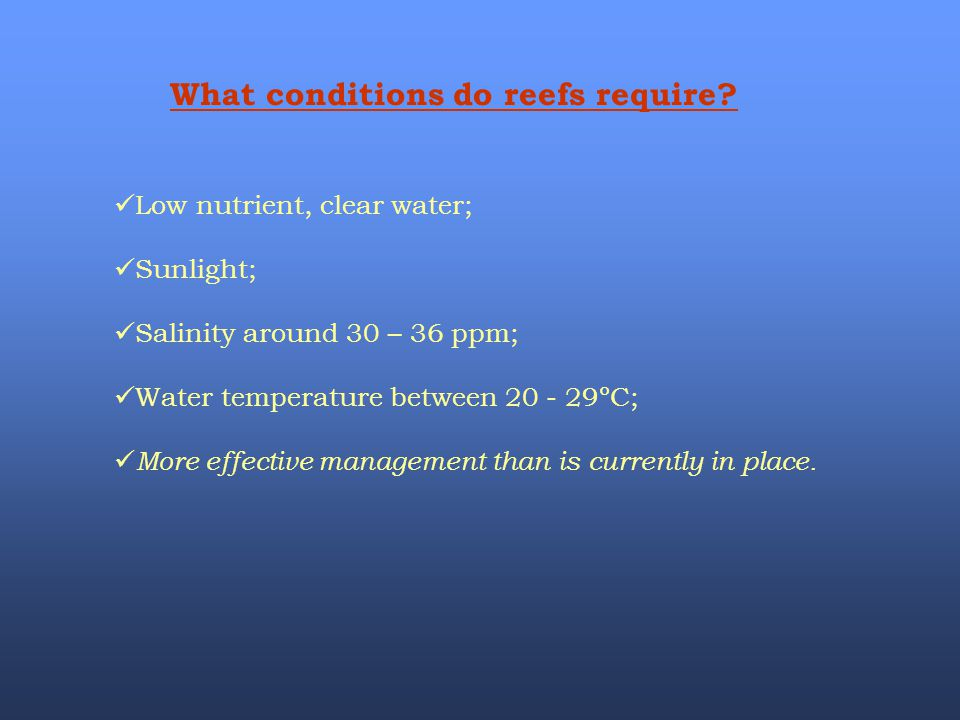 What conditions do reefs require