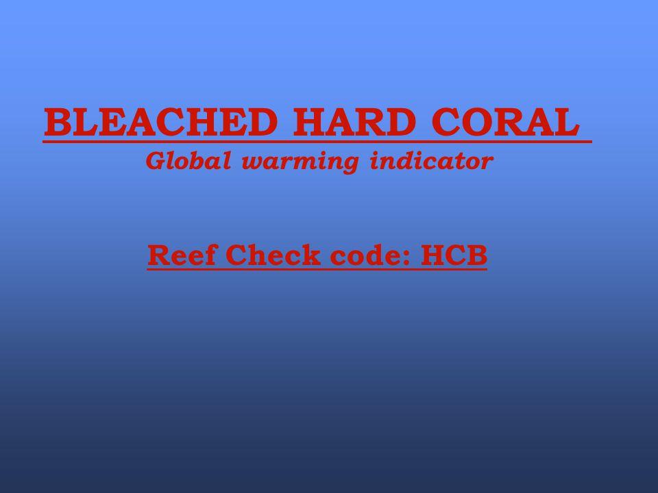 Global warming indicator
